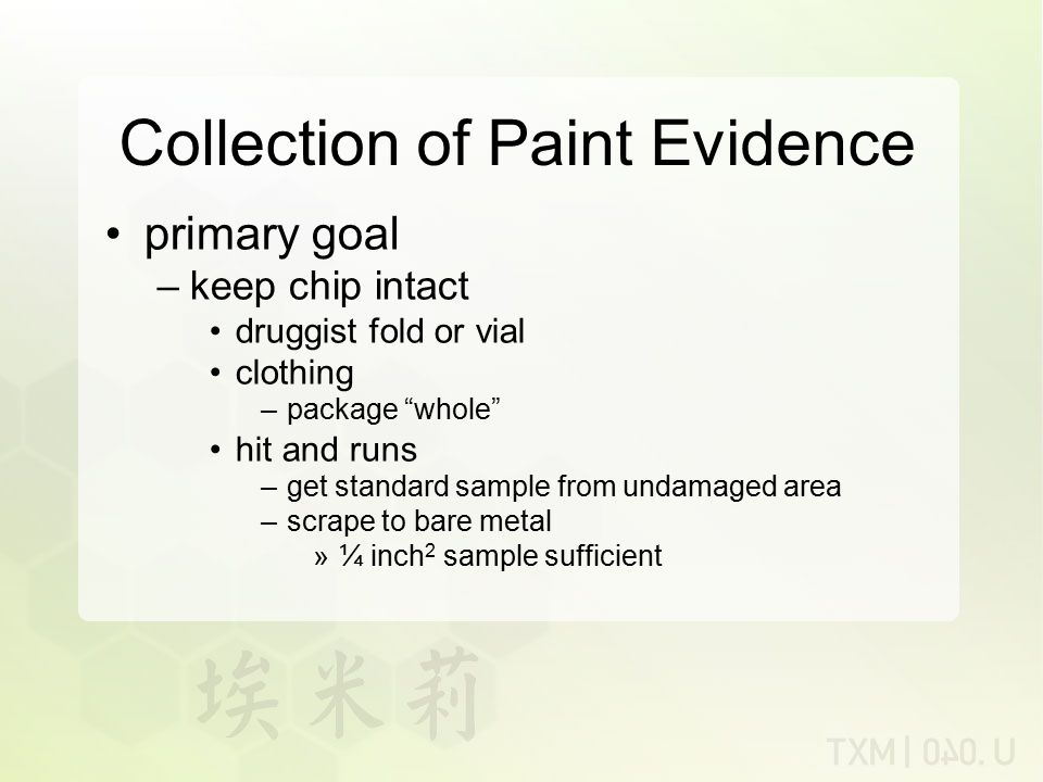 Collection of Paint Evidence