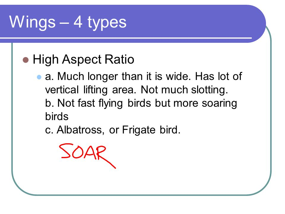Wings – 4 types High Aspect Ratio