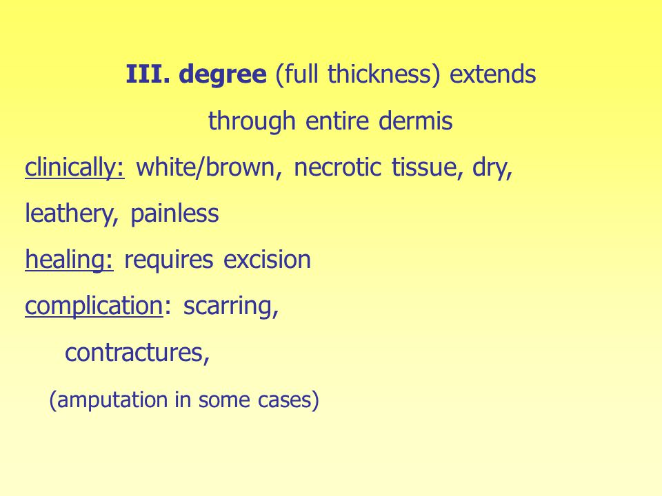 III. degree (full thickness) extends through entire dermis