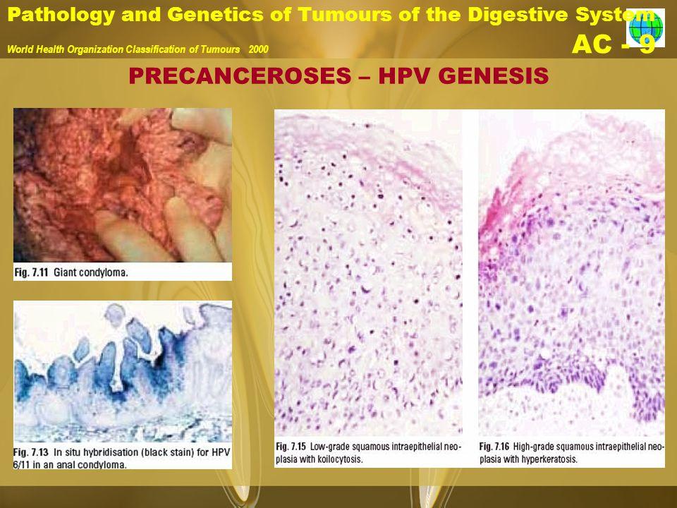 PRECANCEROSES – HPV GENESIS