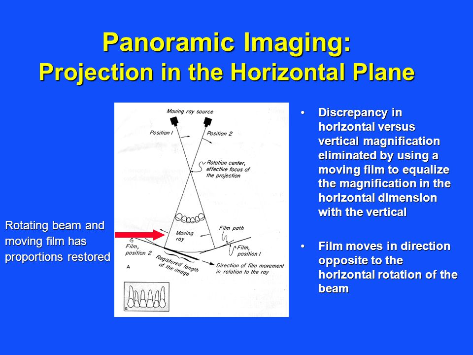Panoramic Imaging: Projection in the Horizontal Plane