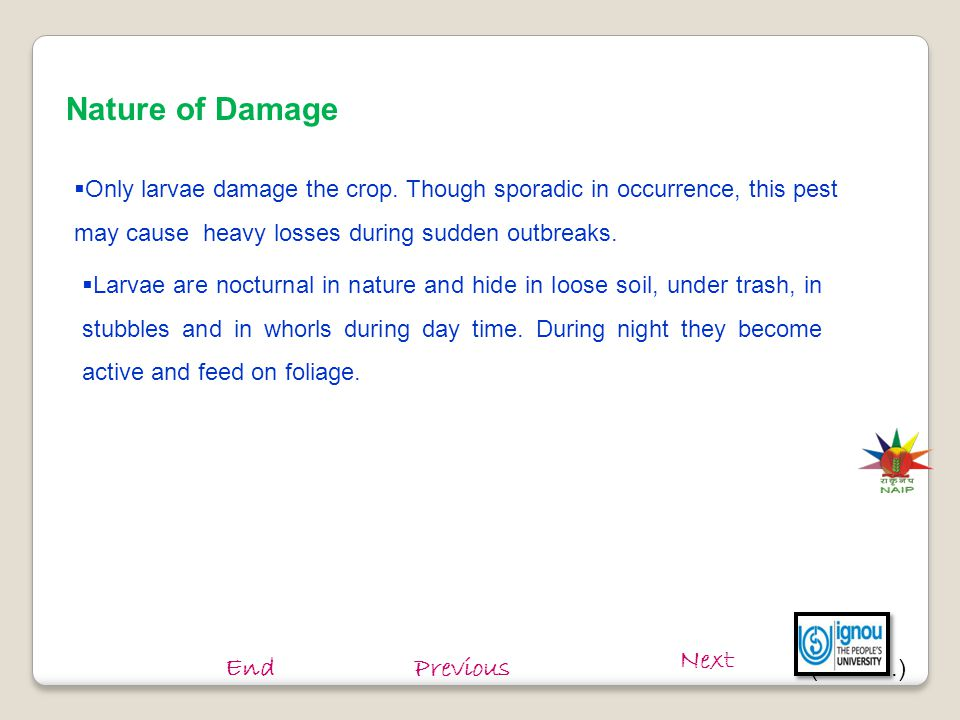 Nature of Damage Next End Previous