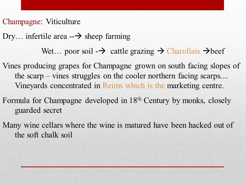 Champagne: Viticulture