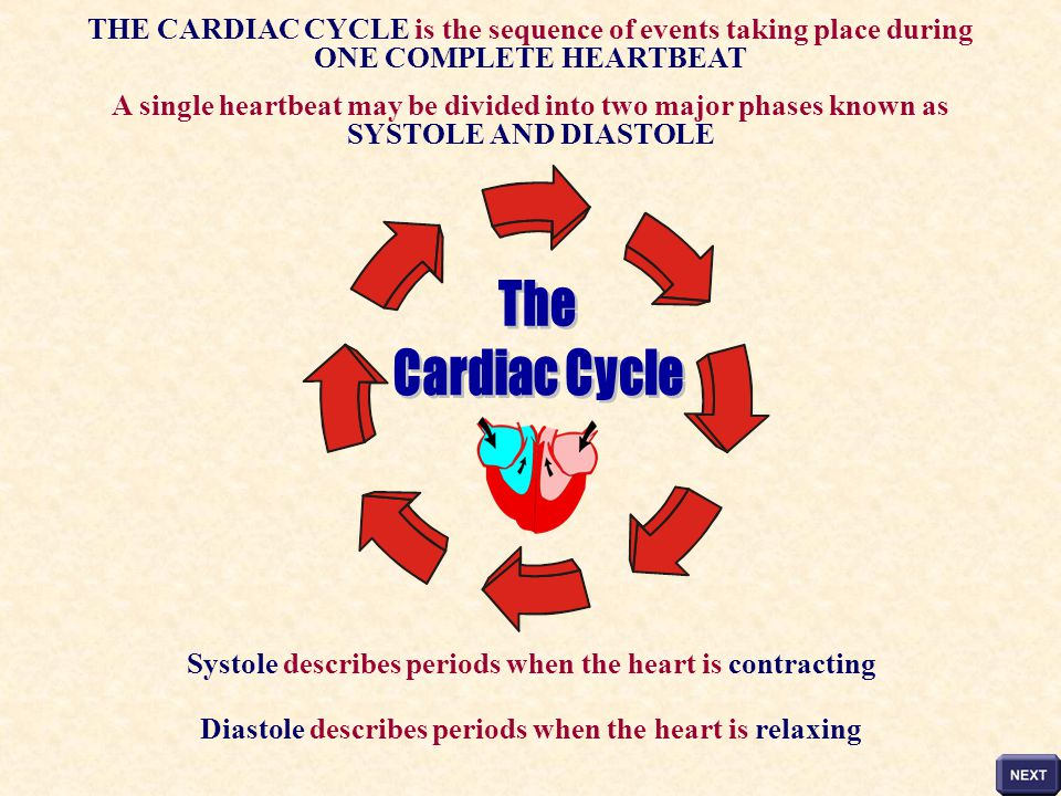 THE CARDIAC CYCLE is the sequence of events taking place during