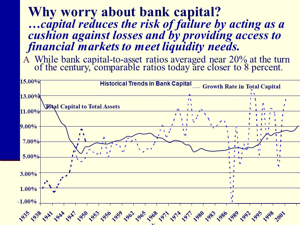 Why worry about bank capital