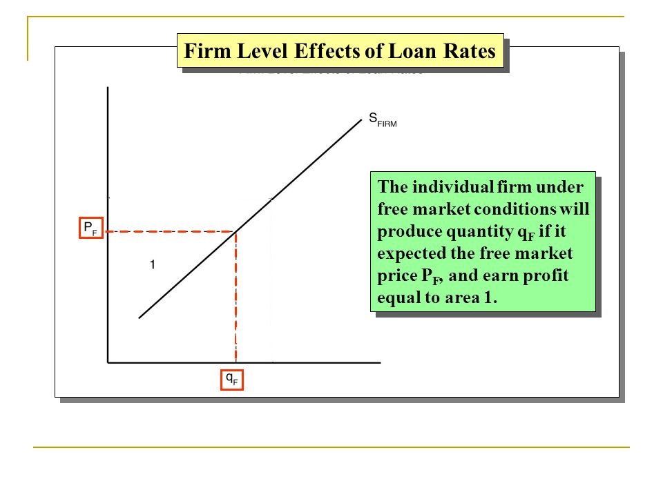 Firm Level Effects of Loan Rates