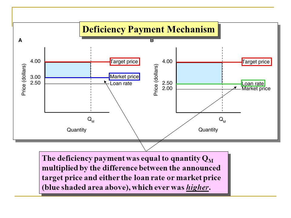 Deficiency Payment Mechanism