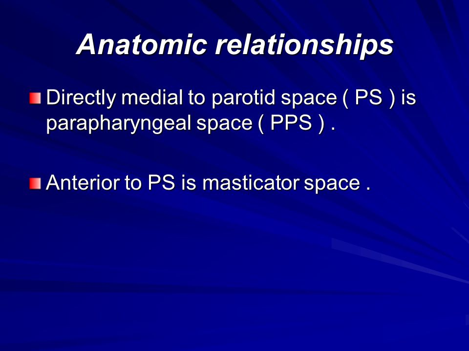 Anatomic relationships