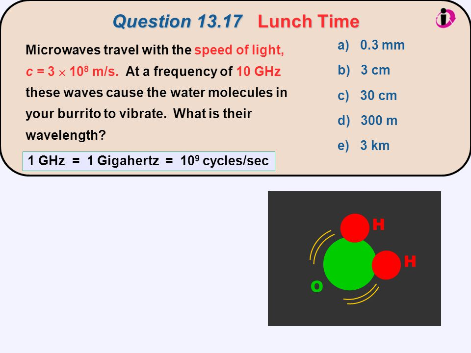 Question 13.17 Lunch Time