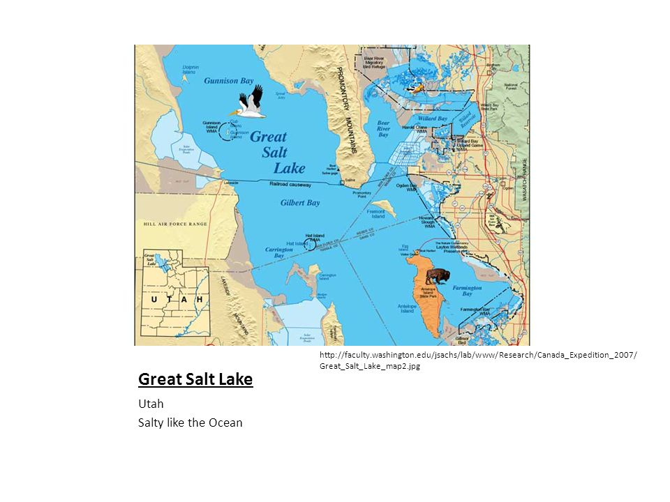 Great Salt Lake Utah Salty like the Ocean