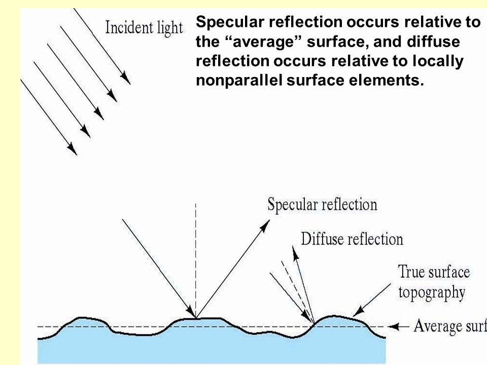 Specular reflection occurs relative to the average surface, and diffuse reflection occurs relative to locally nonparallel surface elements.