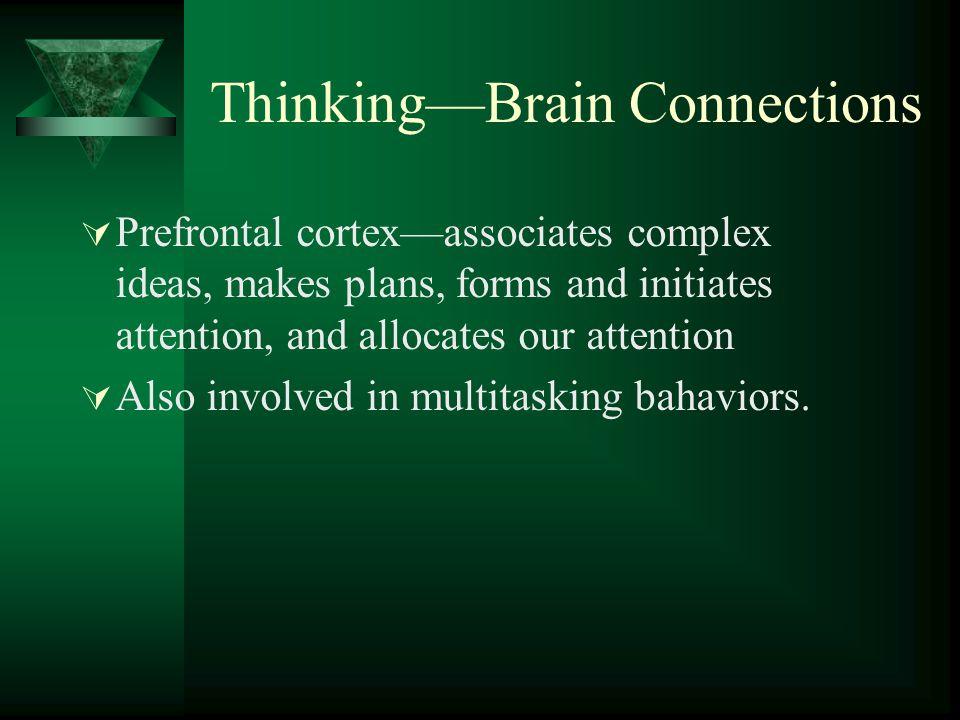 Thinking—Brain Connections