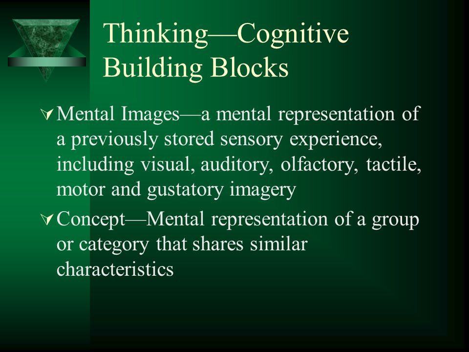 Thinking—Cognitive Building Blocks