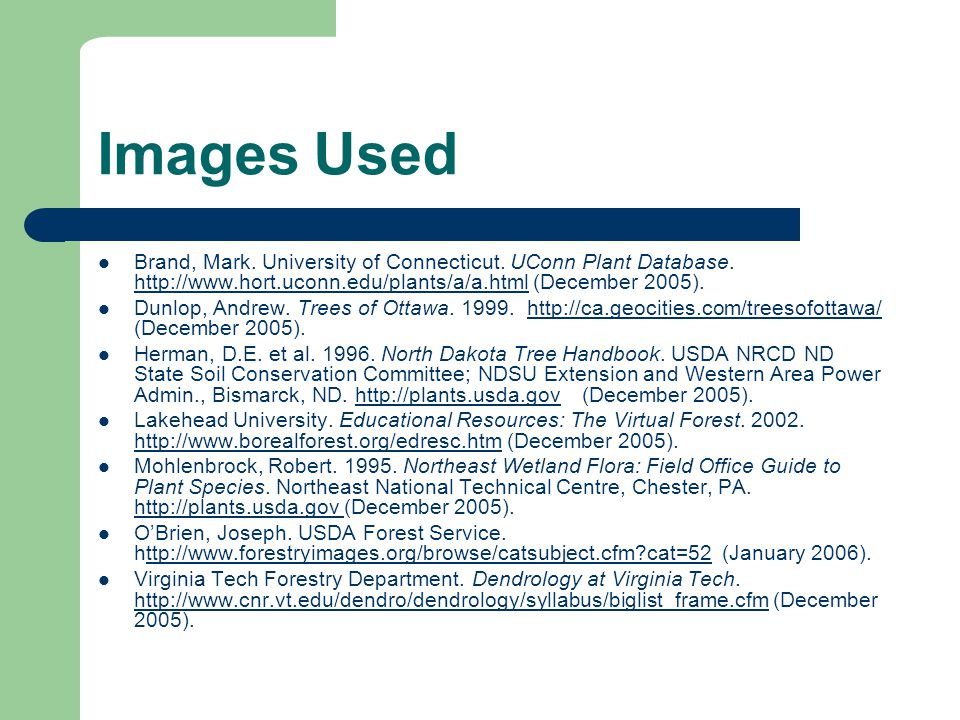 Images Used Brand, Mark. University of Connecticut. UConn Plant Database. http://www.hort.uconn.edu/plants/a/a.html (December 2005).