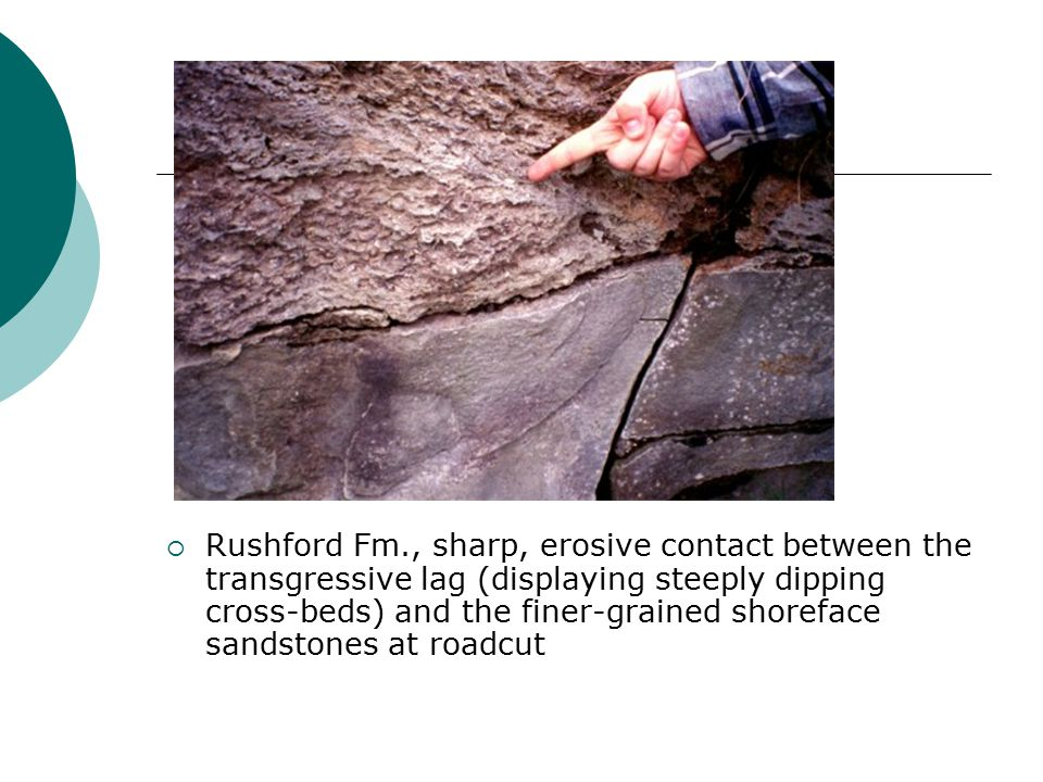 Rushford Fm., sharp, erosive contact between the transgressive lag (displaying steeply dipping cross-beds) and the finer-grained shoreface sandstones at roadcut