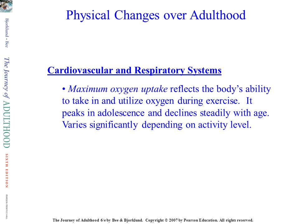 Physical Changes over Adulthood