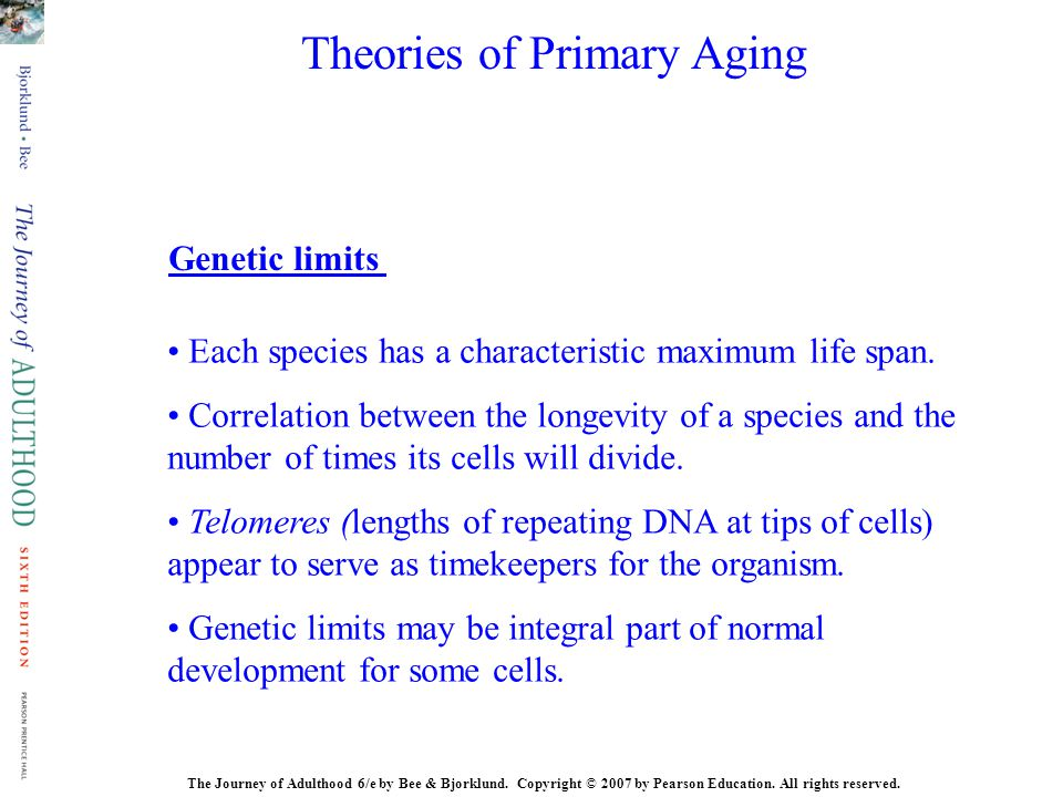 Theories of Primary Aging