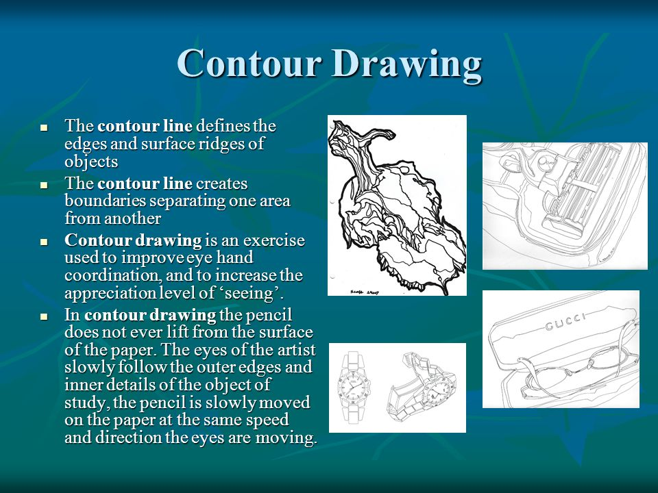 Contour Drawing The contour line defines the edges and surface ridges of objects.