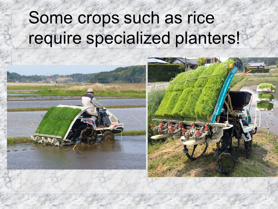 Some crops such as rice require specialized planters!