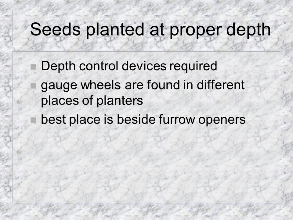 Seeds planted at proper depth
