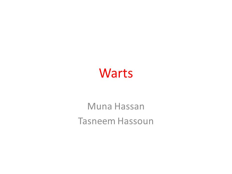 Muna Hassan Tasneem Hassoun
