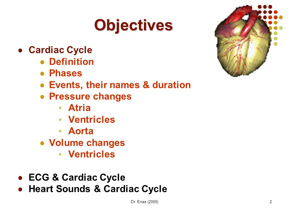 Objectives Cardiac Cycle Definition Phases