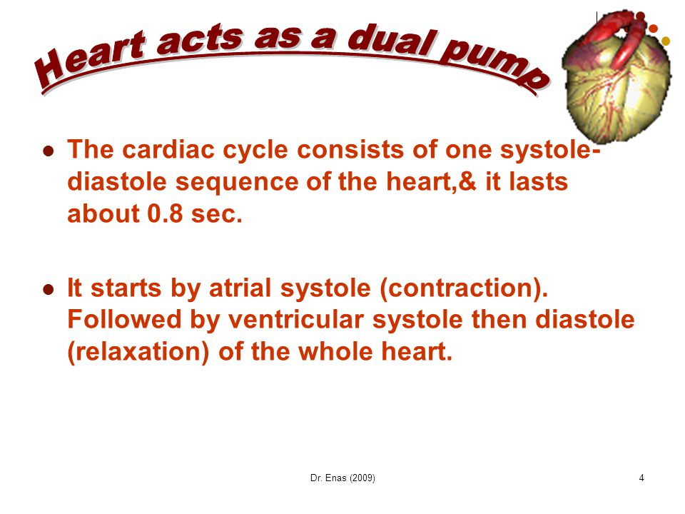 Heart acts as a dual pump