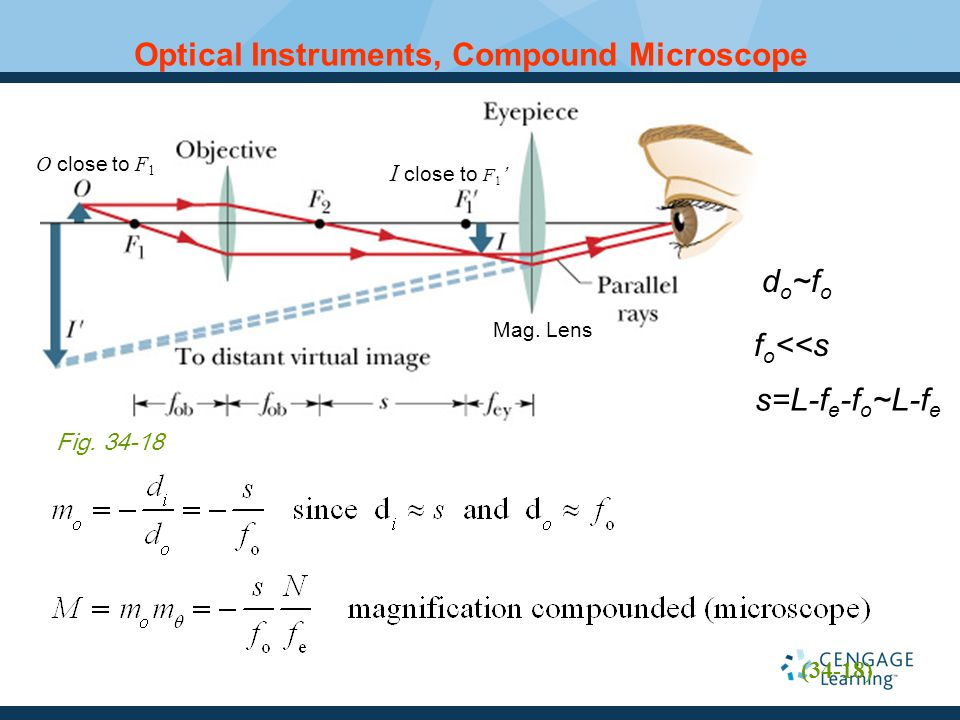 Optical Instruments, Compound Microscope