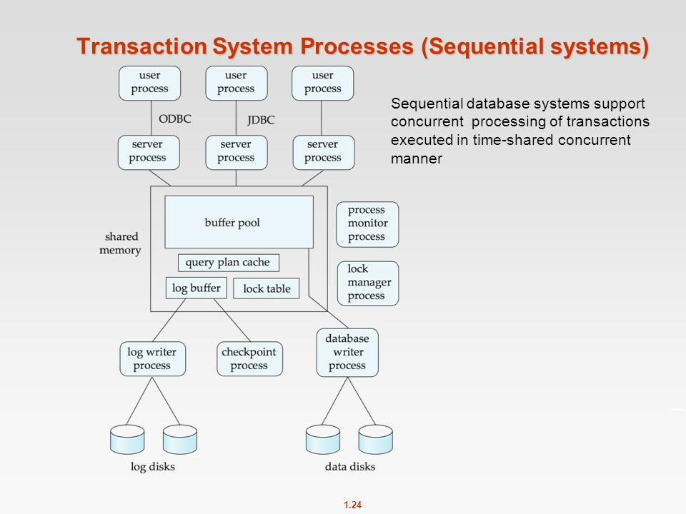 Transaction System Processes (Sequential systems)