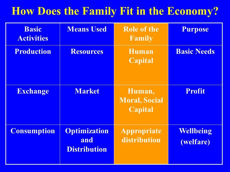 How Does the Family Fit in the Economy
