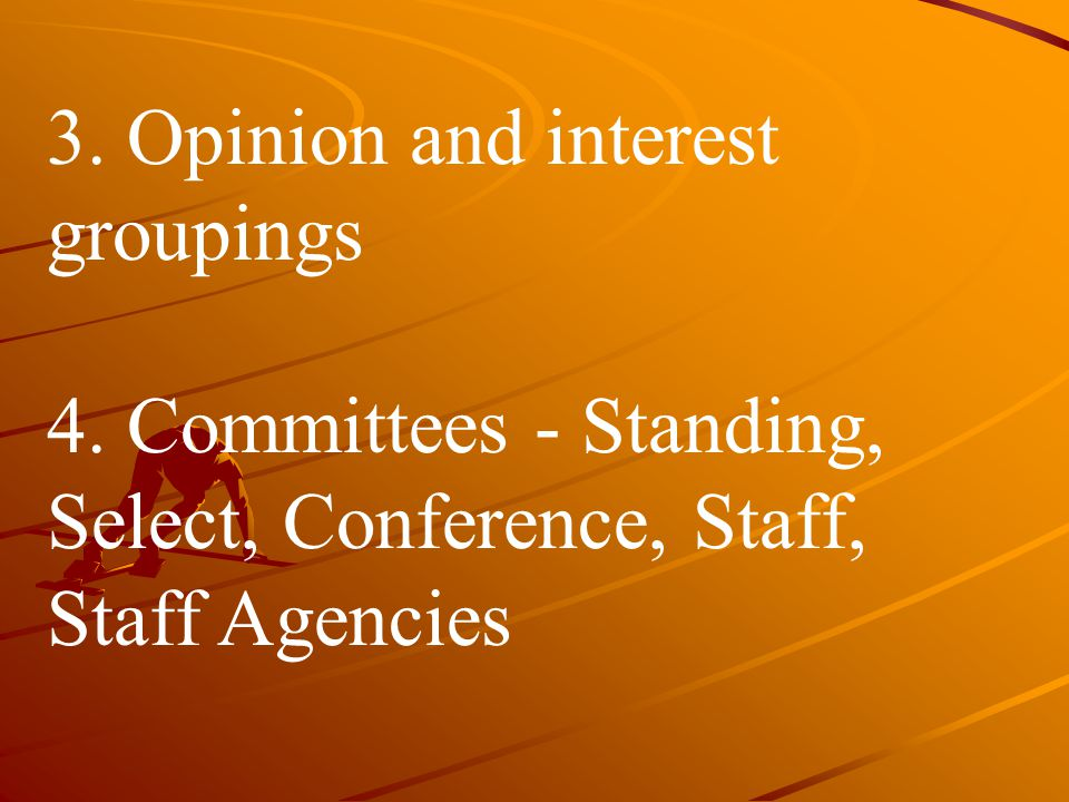 3. Opinion and interest groupings