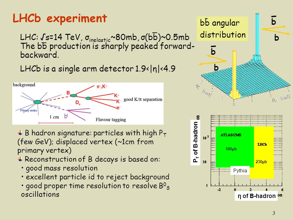 LHCb experiment - b bb angular distribution
