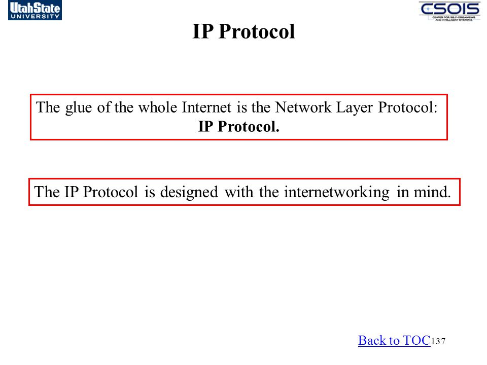 The glue of the whole Internet is the Network Layer Protocol:
