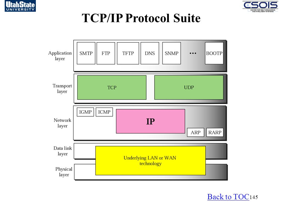 TCP/IP Protocol Suite Back to TOC