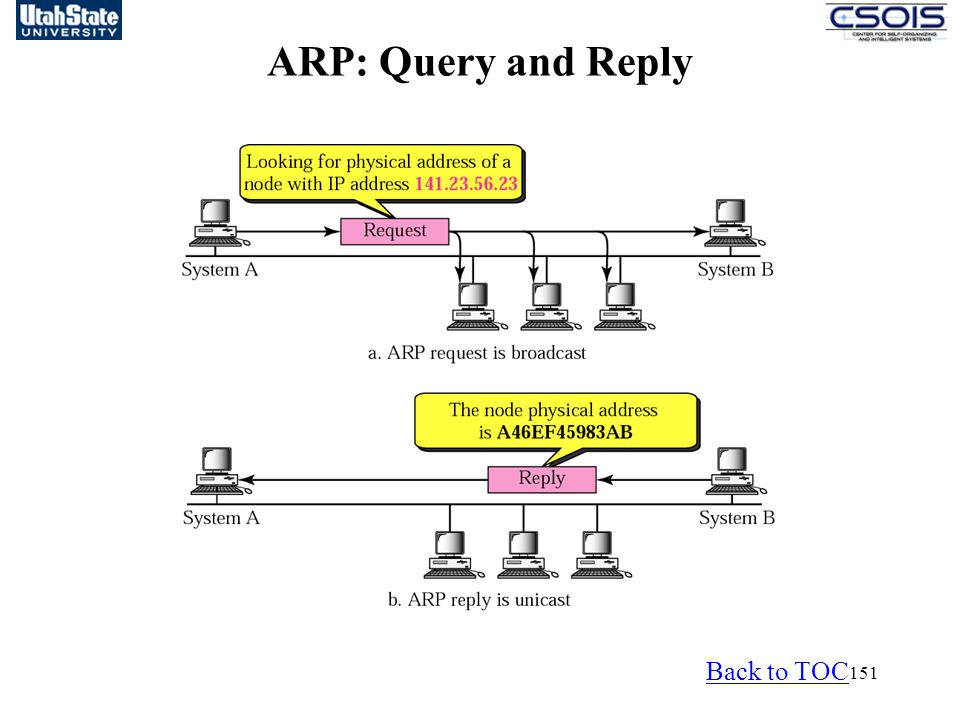 ARP: Query and Reply Back to TOC