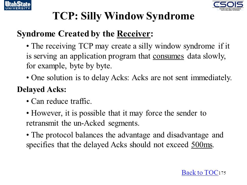 TCP: Silly Window Syndrome