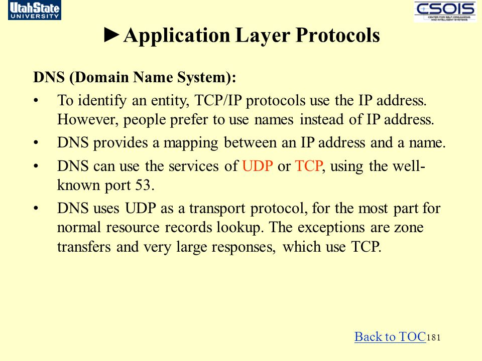 ►Application Layer Protocols