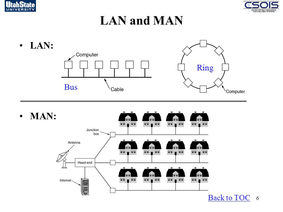 LAN and MAN LAN: MAN: Ring Bus Back to TOC