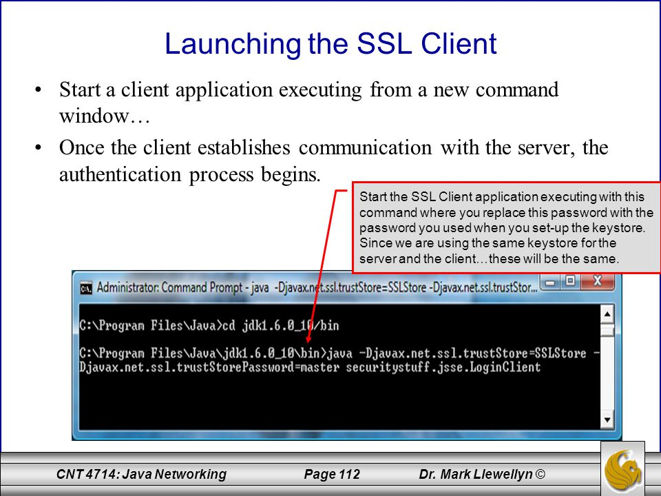 Launching the SSL Client