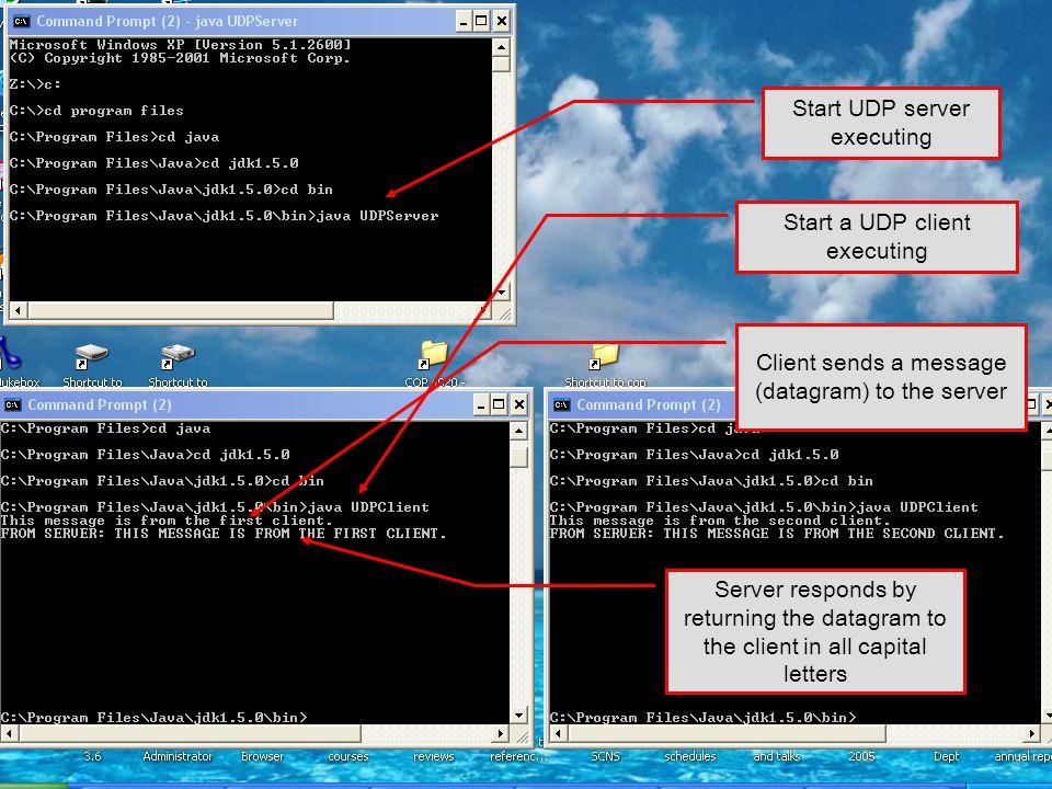 Start UDP server executing
