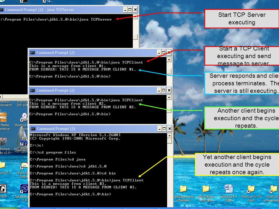 Start TCP Server executing