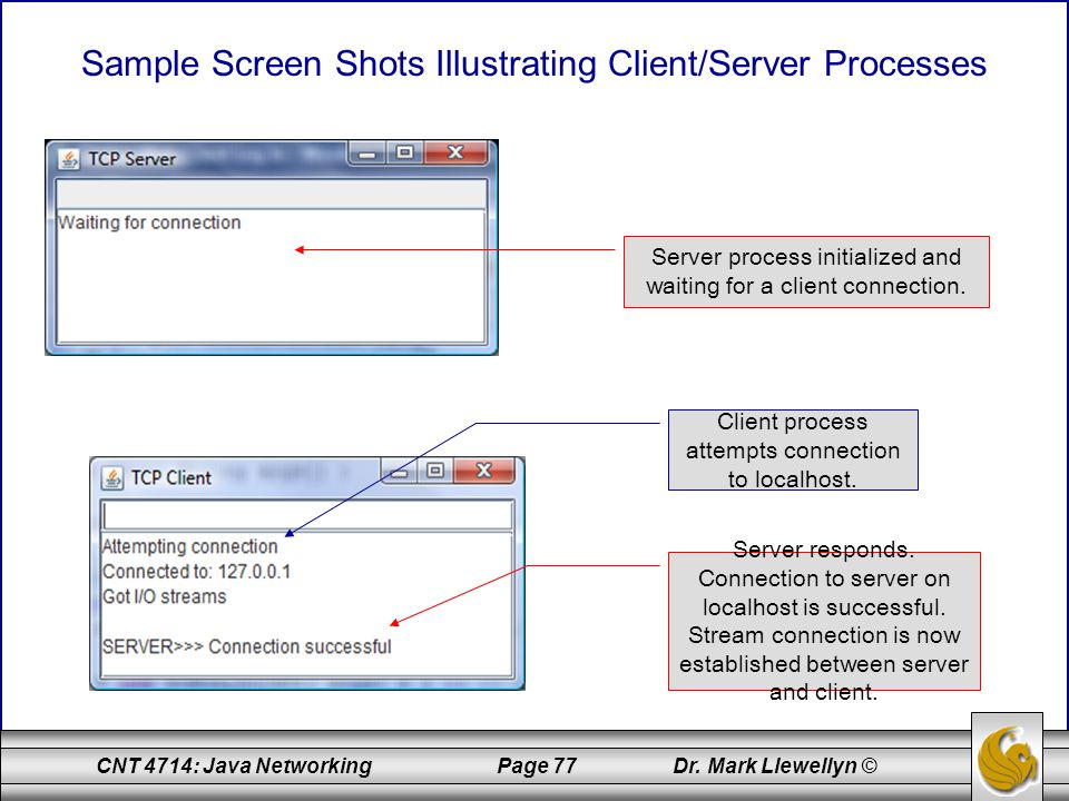 Sample Screen Shots Illustrating Client/Server Processes