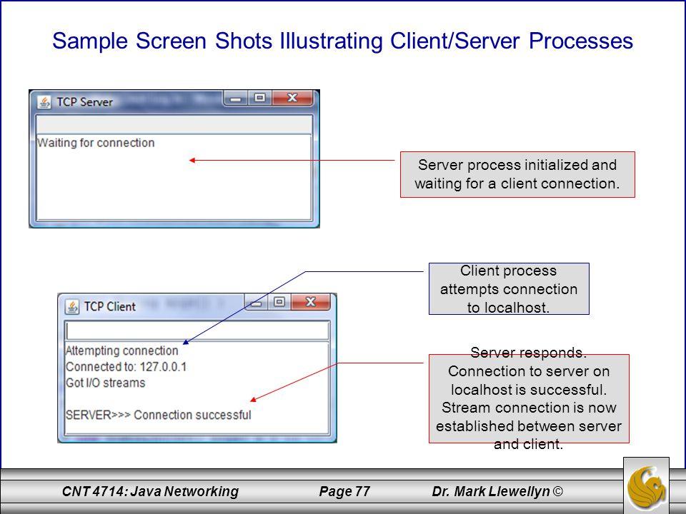 Sample Screen Shots Illustrating Client/Server Processes