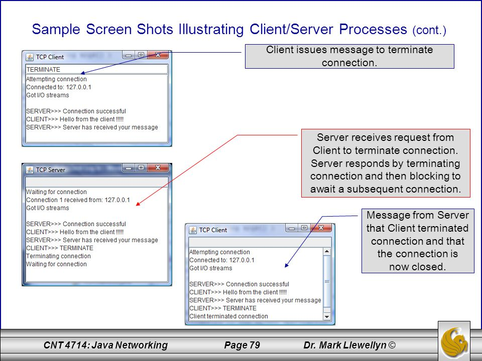 Sample Screen Shots Illustrating Client/Server Processes (cont.)