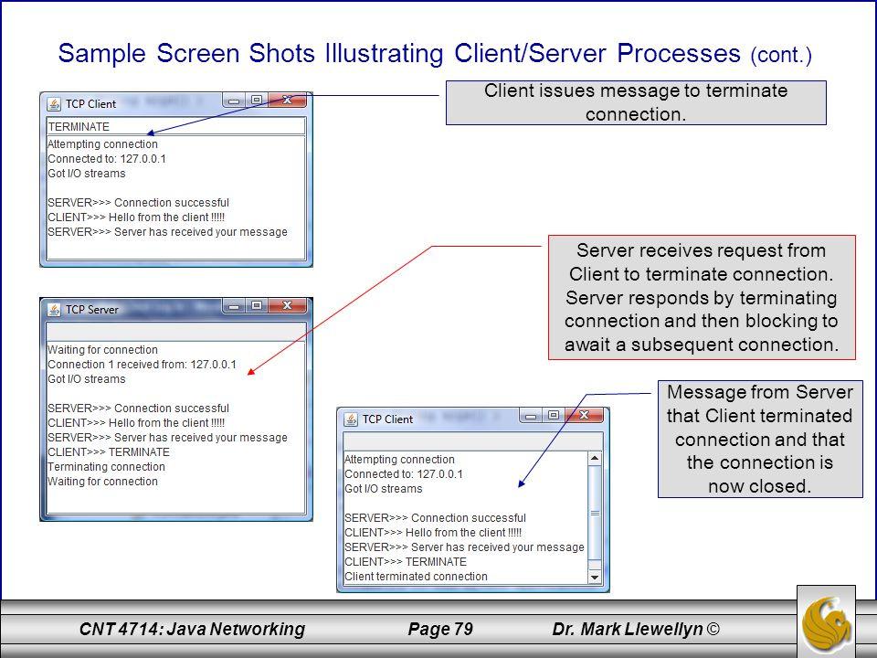 Sample Screen Shots Illustrating Client/Server Processes (cont.)