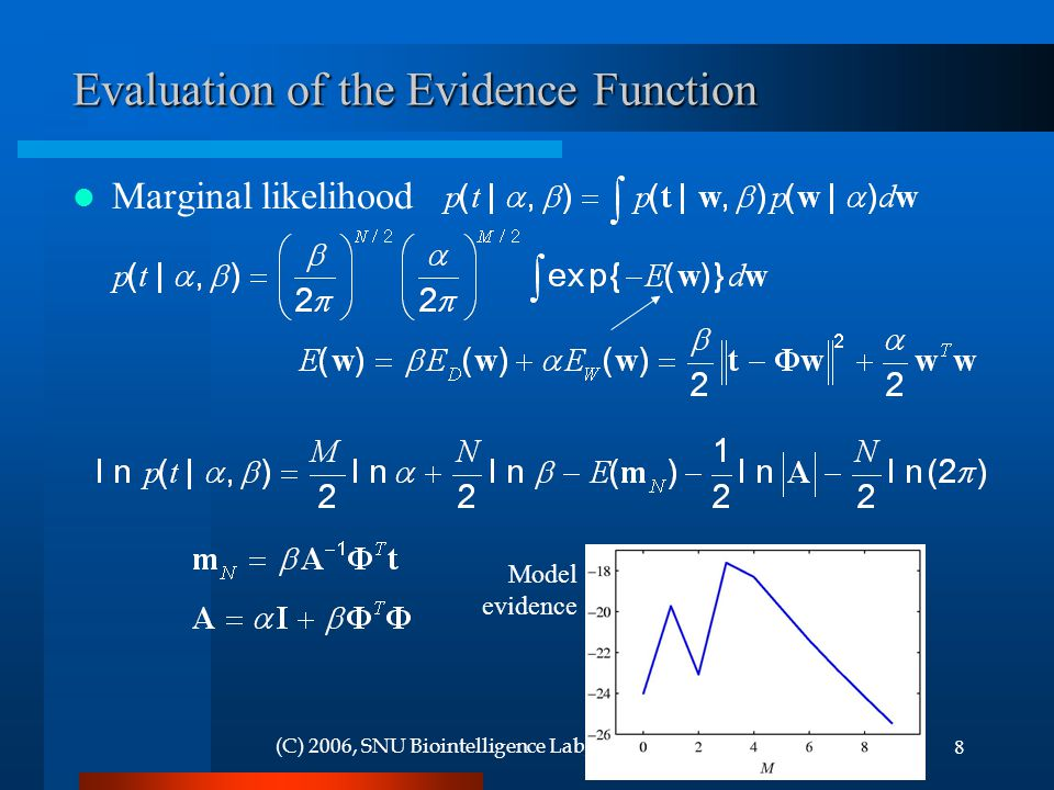 Evaluation of the Evidence Function