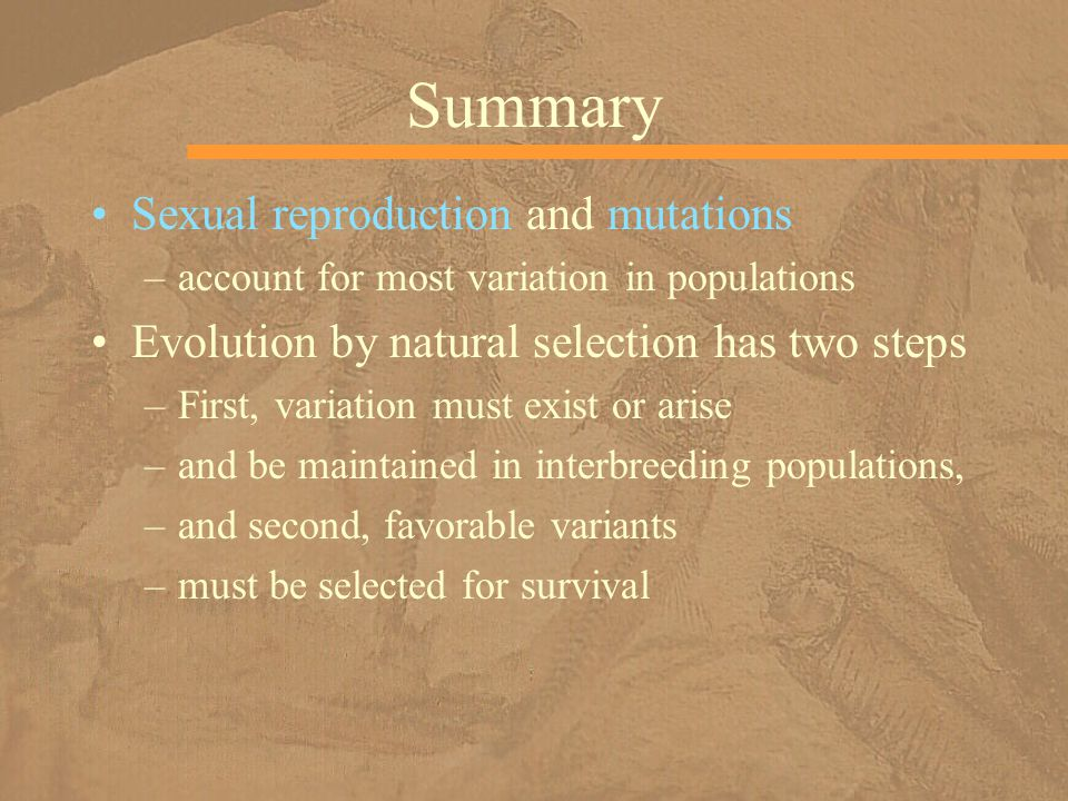 Summary Sexual reproduction and mutations