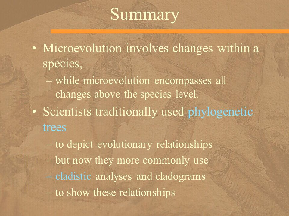 Summary Microevolution involves changes within a species,