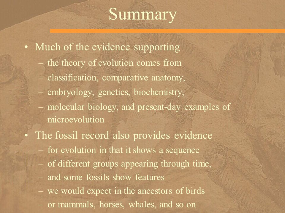 Summary Much of the evidence supporting