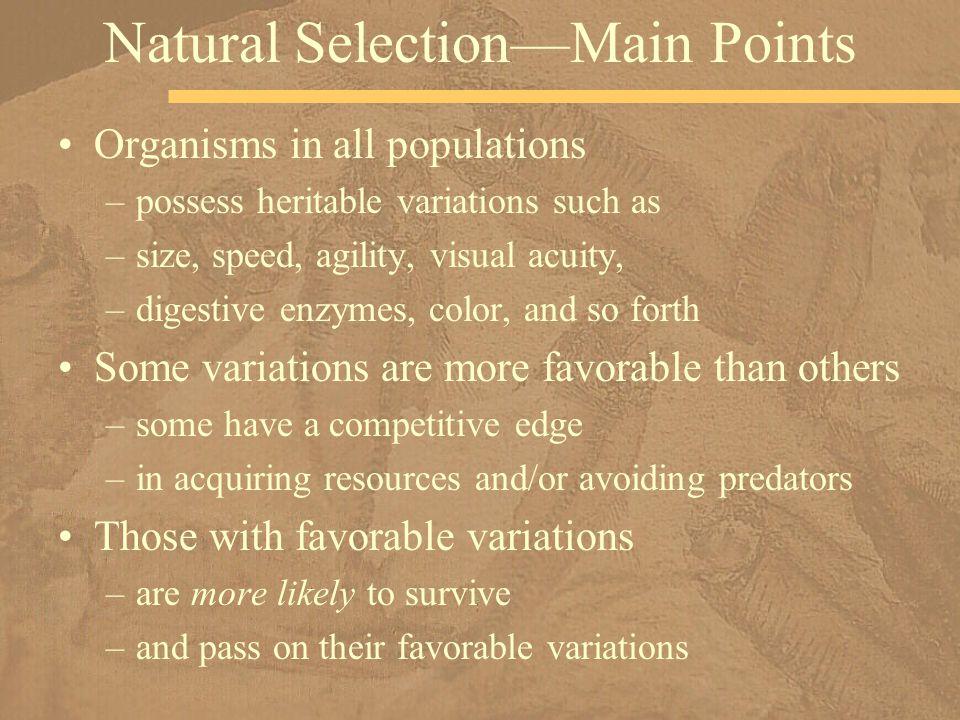 Natural Selection—Main Points
